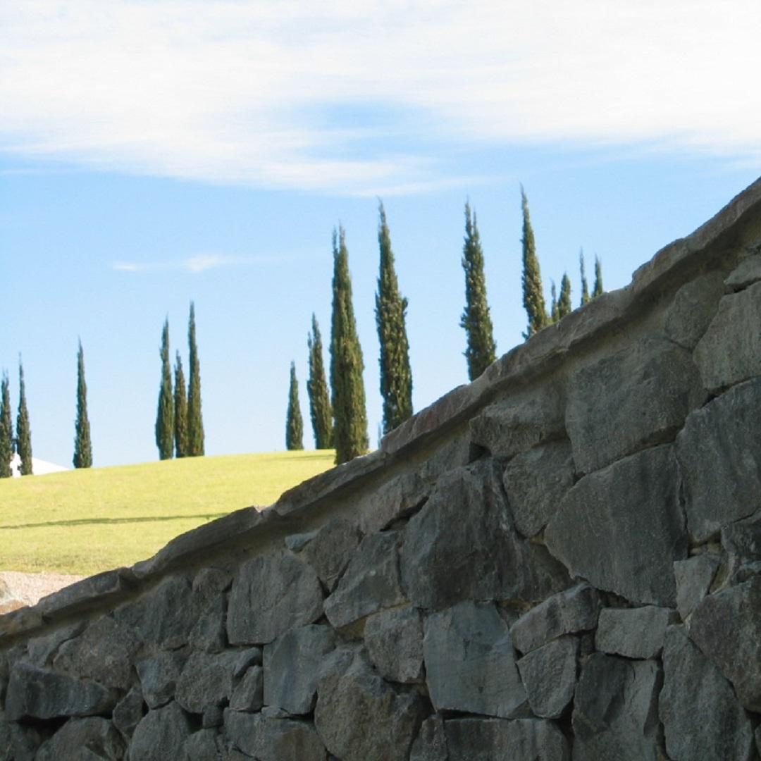 abela wall